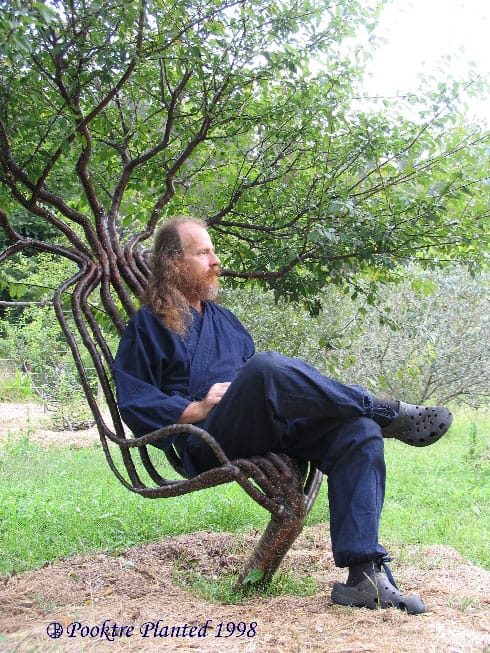 Living Tree Chair