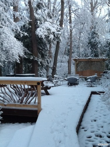 Snowy Deck and Railing