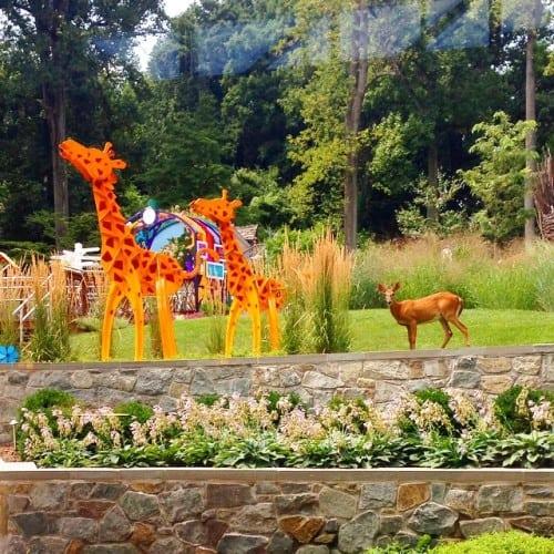 Children's Inn Giraffes and Deer