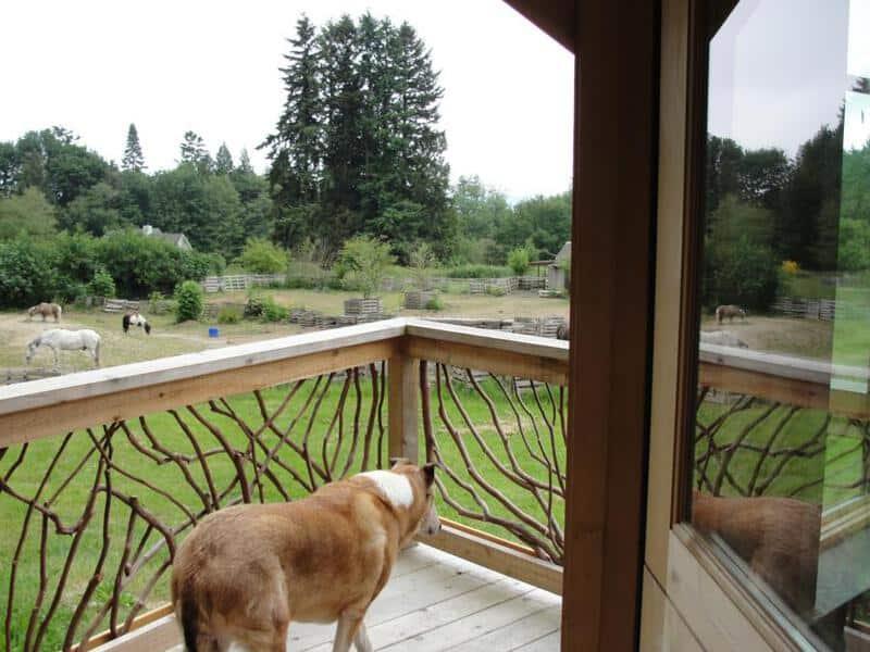 artistic-deck-railings