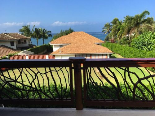 Aloha from Mountain Laurel Handrails